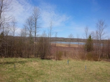 Listing Image #2 - Land for sale at Amon Meadows Lot #4, Alanson MI 49706