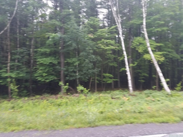 Listing Image #1 - Land for sale at 0 Coiunty Route 353, Rensselaerville NY 12147