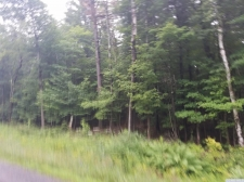 Listing Image #2 - Land for sale at 0 Coiunty Route 353, Rensselaerville NY 12147