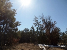 Land for sale in West Branch, MI