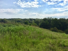 Listing Image #3 - Land for sale at 2984 127th Drive, Amana IA 52203