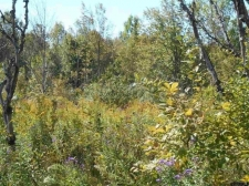 Land for sale in Glenville, NY