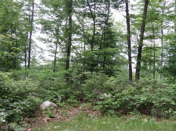 Listing Image #2 - Land for sale at 0 Silver Vista Ln Lot E, Mears MI 49436