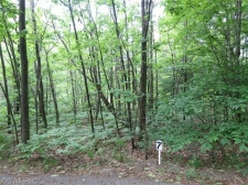 Listing Image #1 - Land for sale at 0 Silver Vista Ln #7, Mears MI 49436