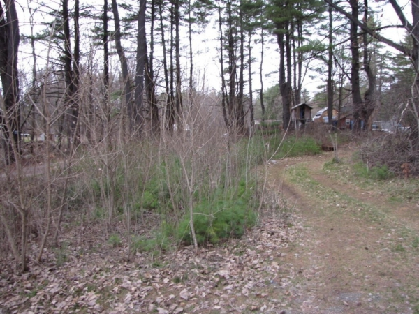 Listing Image #1 - Land for sale at 5806 Brook Way, Fort Ann NY 12827