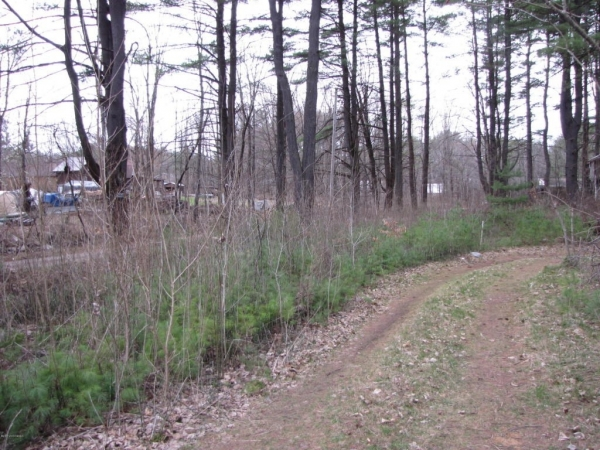 Listing Image #2 - Land for sale at 5806 Brook Way, Fort Ann NY 12827