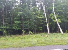 Land for sale in Rensselaerville, NY