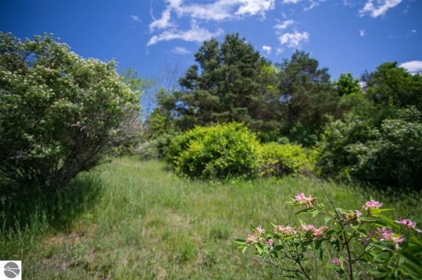 Listing Image #3 - Land for sale at 8688 Sun Bay Court, Williamsburg MI 49690