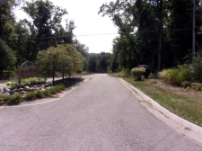 Listing Image #2 - Land for sale at 1693 Ryan Woods Drive 30, Allegan MI 49010