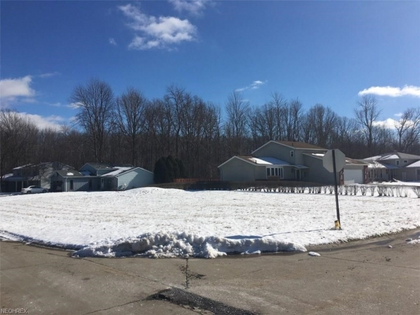 Listing Image #2 - Land for sale at Lyman Cl & Westchester Dr, Brunswick OH 44212