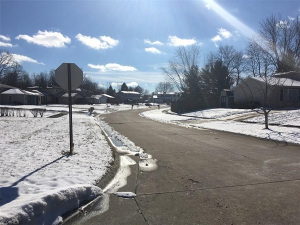 Listing Image #3 - Land for sale at Lyman Cl & Westchester Dr, Brunswick OH 44212