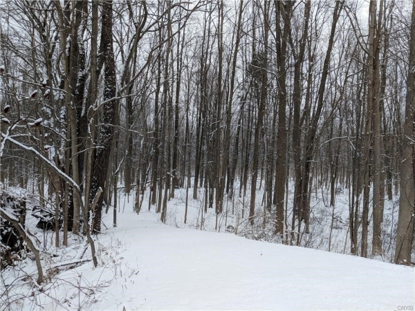 Listing Image #1 - Land for sale at Lot 70 Co Rt 6, Schroeppel NY 13135