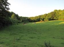 Land for sale in Hebron, NY