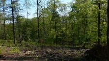 Land for sale in Walloon Lake, MI