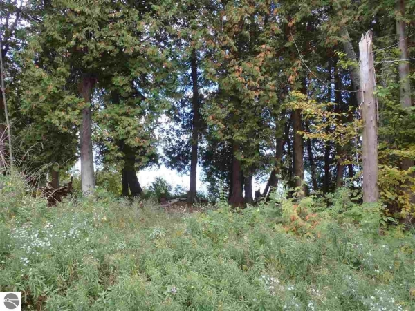 Listing Image #3 - Land for sale at 1465 S Nanagosa Trail, Suttons Bay MI 49682