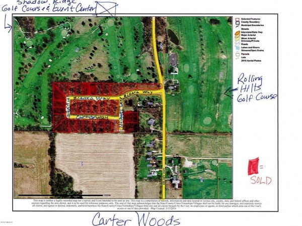 Listing Image #2 - Land for sale at 25 Michael Lane, Ionia MI 48846