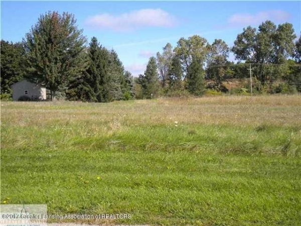 Listing Image #1 - Land for sale at 00 W Galway Lot 5 Circle, Dimondale MI 48821