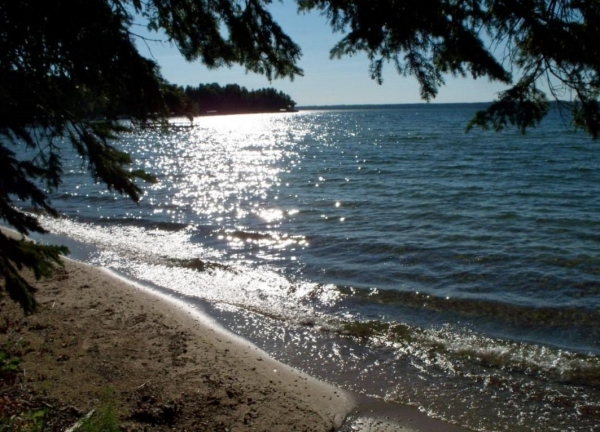 Listing Image #3 - Land for sale at 1681 N EAST MULLETT LAKE Road 14 Acres, Indian River MI 49749