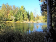 Listing Image #3 - Land for sale at 0 Drinkaus Trail, Grayling MI 49738