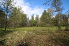 Listing Image #1 - Land for sale at Pine Trace Unit 7, Indian River MI 49749
