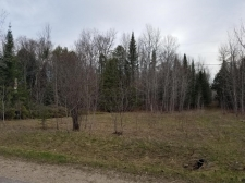 Listing Image #1 - Land for sale at 0 St. Ignace RD, Hessel MI 49745