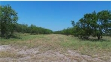 Land for sale in Alice, TX