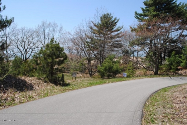 Listing Image #2 - Land for sale at W Thomas Street, Shelby MI 49455