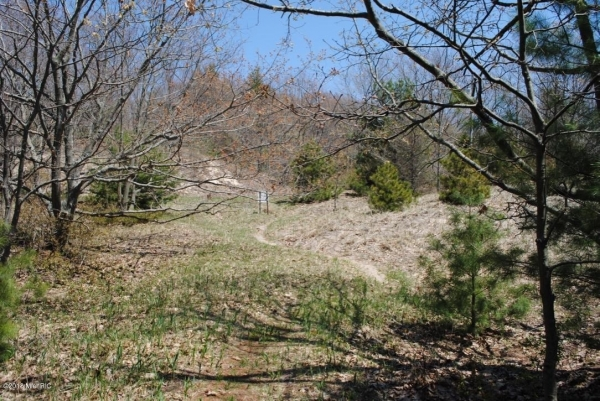 Listing Image #3 - Land for sale at W Thomas Street, Shelby MI 49455