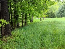 Listing Image #2 - Land for sale at 1861 Nys Route 49, Vienna NY 13123