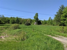 Listing Image #3 - Land for sale at 1861 Nys Route 49, Vienna NY 13123