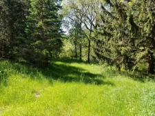 Land for sale in Eaton Rapids, MI
