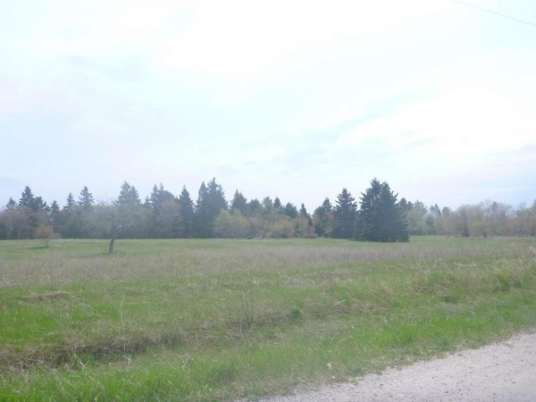 Listing Image #2 - Land for sale at 0000 Park Road, Naubinway MI 49762