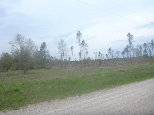 Listing Image #3 - Land for sale at 0000 Park Road, Naubinway MI 49762