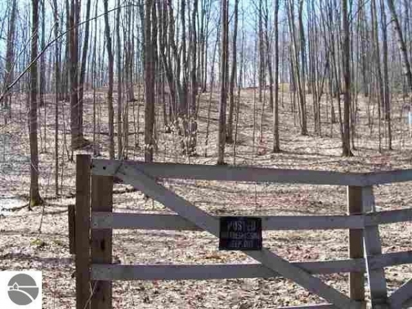 Listing Image #1 - Land for sale at Entwood Lane, Fife Lake MI 49633