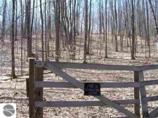 Land for sale in Fife Lake, MI