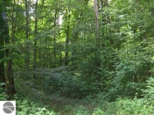 Listing Image #3 - Land for sale at Entwood Lane, Fife Lake MI 49633