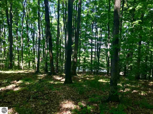 Listing Image #3 - Land for sale at Golf Meadows Lot 30, Bellaire MI 49615
