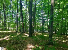 Listing Image #1 - Land for sale at Golf Meadows Lot 30, Bellaire MI 49615