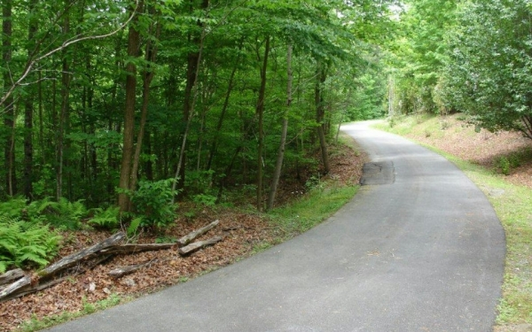 Listing Image #3 - Land for sale at L 401 Little Hiawatha Tr, Blue Ridge GA 30513
