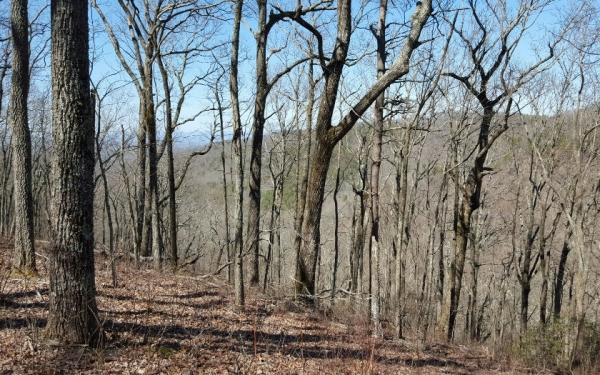 Listing Image #1 - Land for sale at LT216 Falling Waters, Ellijay GA 30540