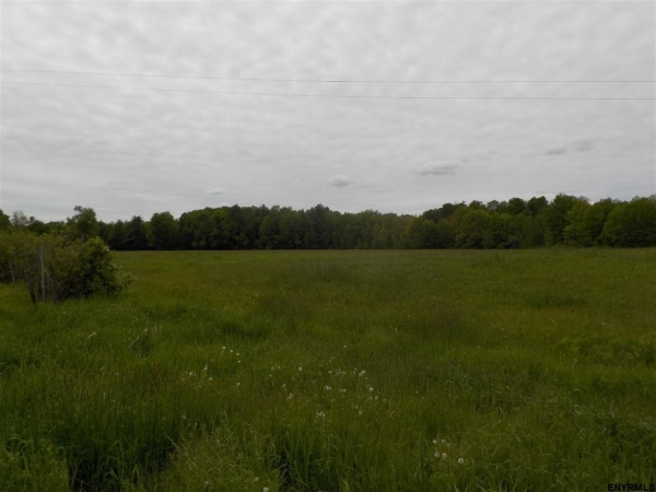 Listing Image #2 - Land for sale at 0 THOMAS RD, Gansevoort NY 12831