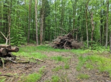 Listing Image #3 - Land for sale at 0 Whiskey Island RD, Vienna NY 13316