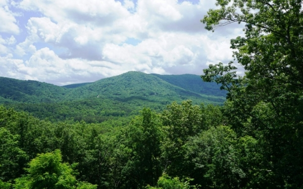 Listing Image #1 - Land for sale at L 13 Overlook Way, Blue Ridge GA 30513