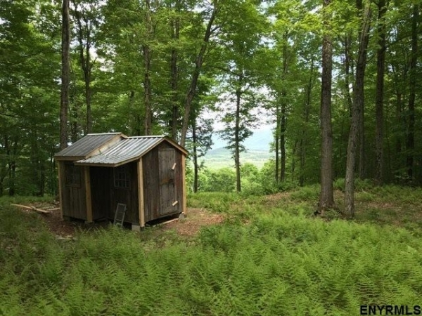 Listing Image #2 - Land for sale at 00 COLFAX RD, Jackson NY 12816