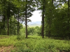 Listing Image #1 - Land for sale at 00 COLFAX RD, Jackson NY 12816