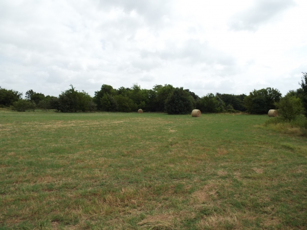 Listing Image #2 - Others for sale at 0 Hilltop, Gun barrel City TX 75156