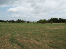 Listing Image #3 - Others for sale at 0 Hilltop, Gun barrel City TX 75156