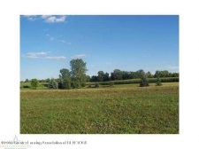 Land for sale in Dansville, MI