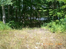 Listing Image #3 - Land for sale at Chippewa Trail Lots #47 & #48, Johannesburg MI 49751