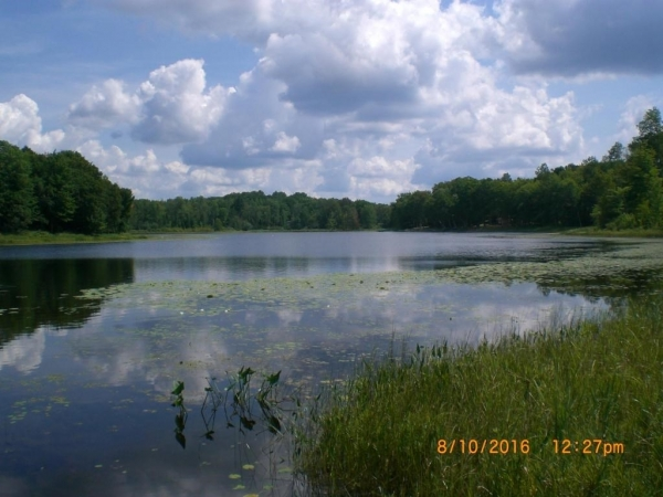 Listing Image #1 - Land for sale at Chippewa Trail Lot 65, Johannesburg MI 49751